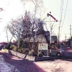 春の気配 - 2009.3